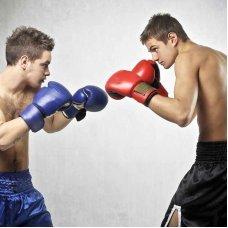 Профессиональная переподготовка и повышение квалификации Тренер-преподаватель по избранному виду спорта (Теория и методика бокса)