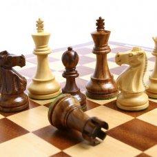Профессиональная переподготовка и повышение квалификации Методика преподавания курса «Шахматы в школе» в условиях реализации ФГОС НОО.