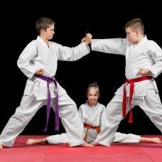 Профессиональная переподготовка и повышение квалификации Организация работы тренера-преподавателя (традиционные боевые искусства и восточные единоборства)