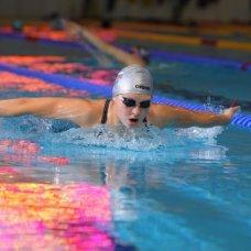 Профессиональная переподготовка и повышение квалификации Тренер-преподаватель по избранному виду спорта (Теория и методика плавания). Профессиональная переподготовка дистанционно.