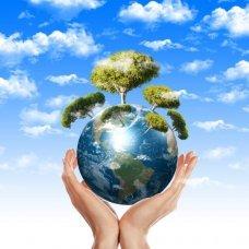 Профессиональная переподготовка и повышение квалификации Педагогическое образование: учитель экологии