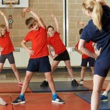 Организация работы тренера-преподавателя детско-юношеской спортивной школы.